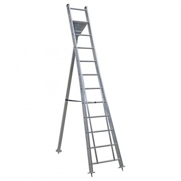 Professional Garden Ladder